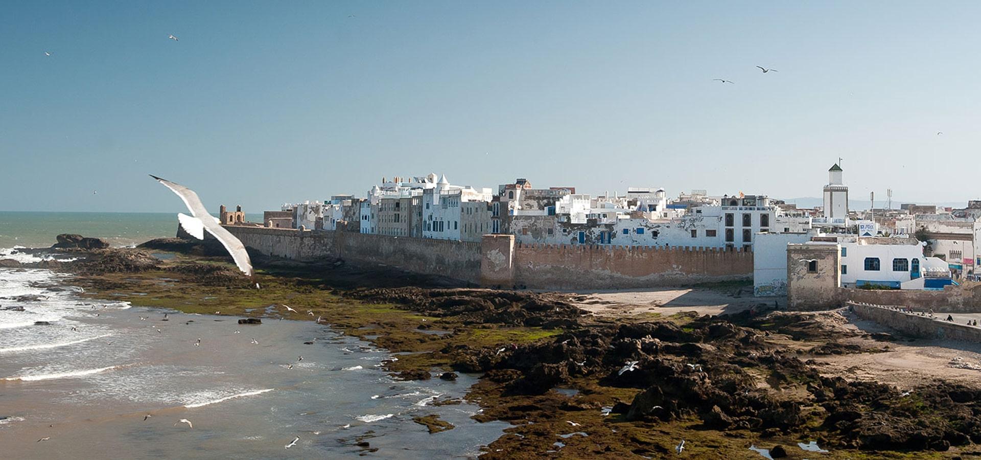 transport touristique marrakech