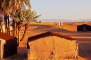 day trip in sahara